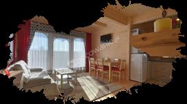 Białka Tatrzańska, domki, salon